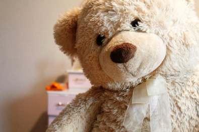 teddy bear pexesl