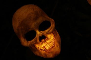 skull-570975_960_720